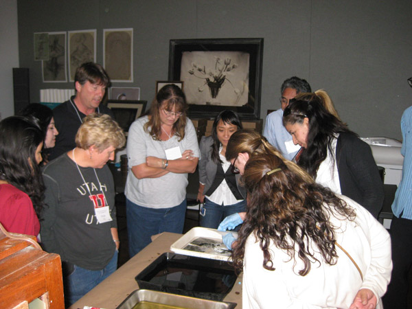 After taking pictures in the garden, we gather to see the images that formed on the light-sensitive paper.