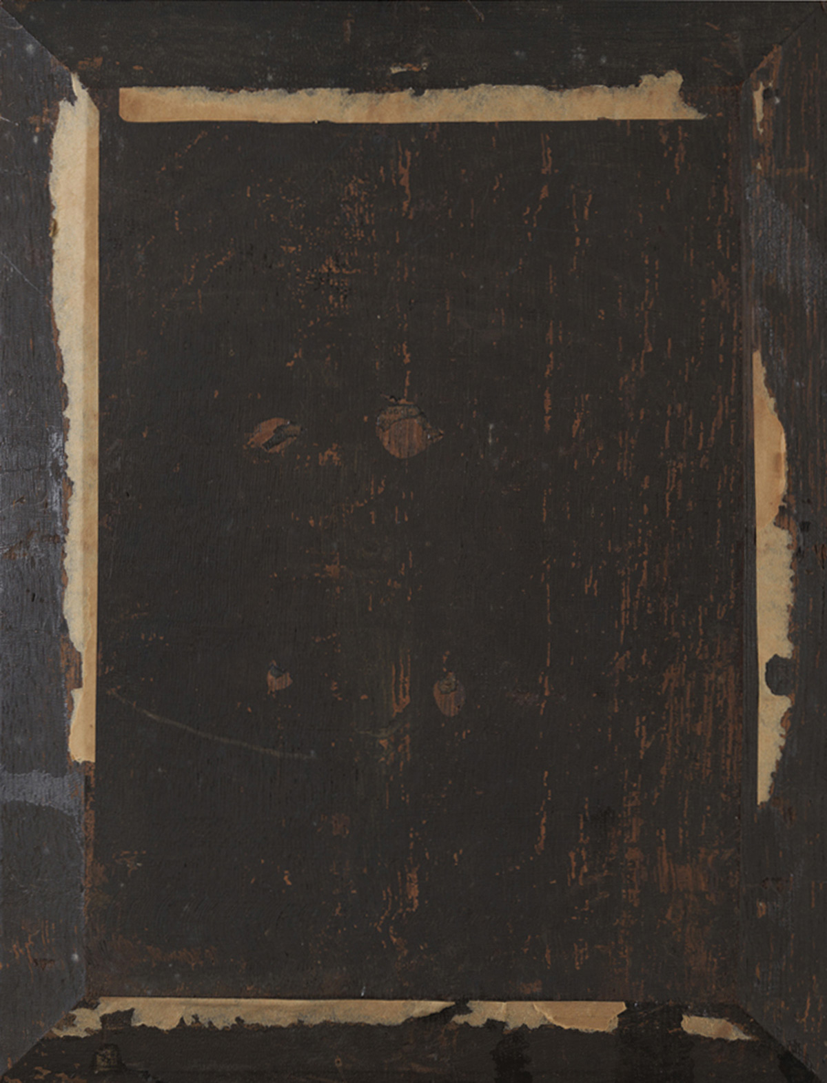 Back view of Rembrandt's Smell showing its beveled oak panel