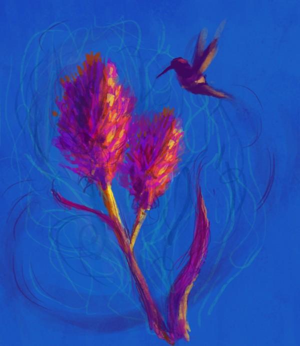 Flight of the Hummingbirds