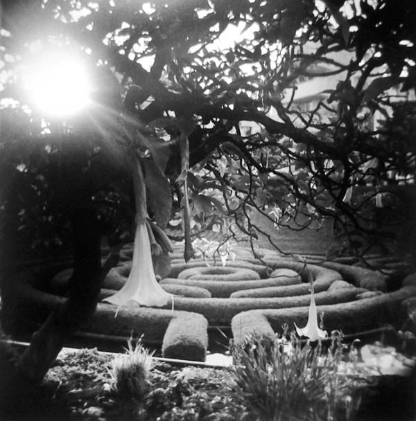 Getty Center garden by Trevor Norman Reynolds