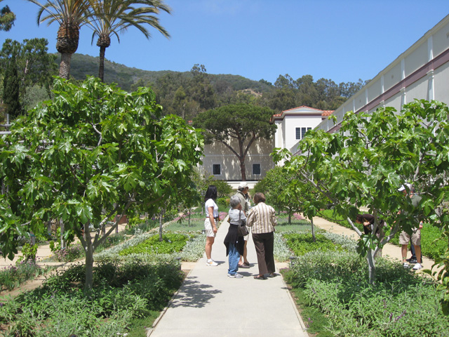Herb Garden at the Getty Villa