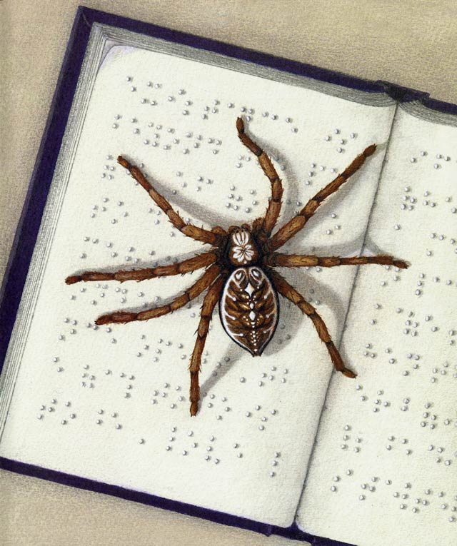 If spiders could read braille - illustration from If... by Sarah Perry