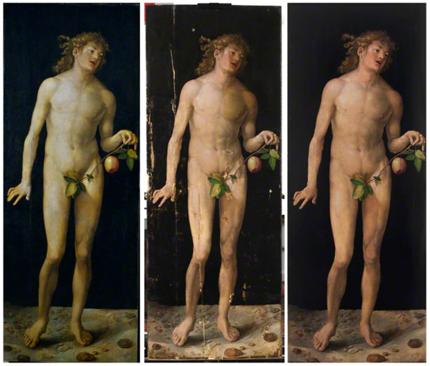 Drer&#039;s &lt;em&gt;Adam&lt;/em&gt; Adam before, during, and after conservation