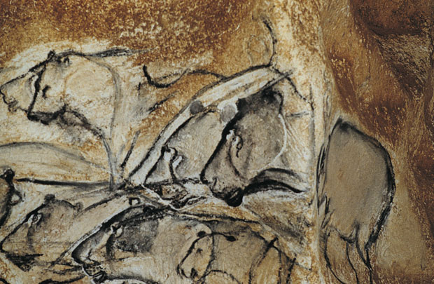 This scene in the Chauvet Cave depicts a pride of lions hunting big game. To the right, a rhinoceros seems to emerge from a recess in the wall. Photo by Jean Clottes. From the book <em>World Rock Art</em> (Getty Publications)