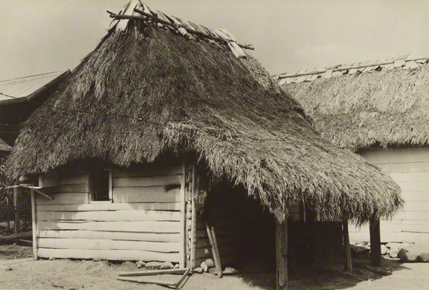 <em>Cuban Bohío</em>, Walker Evans, 1933. The J. Paul Getty Museum. © Walker Evans Archive, The Metropolitan Museum of Art