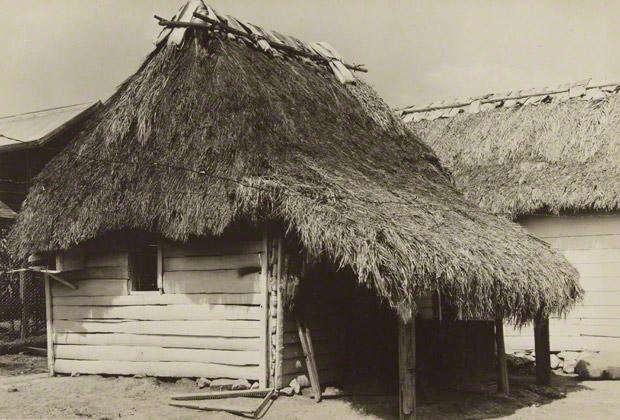 <em>Cuban Bohío</em>, Walker Evans, 1933. The J. Paul Getty Museum. © Walker Evans Archive, The Metropolitan Museum of Art