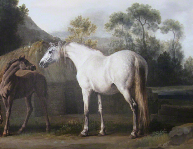 Detail of white mare and her foal in Brood Mares and Foals / George Stubbs