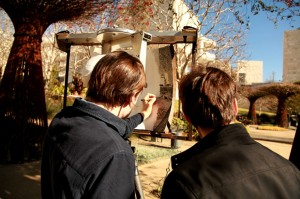 The Oakes Brothers sketch in the Central Garden at the Getty Center