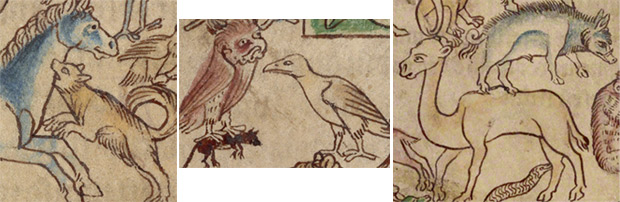 Details of animals in Adam Naming the Animals in the Northumberland Bestiary / English
