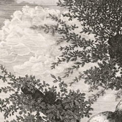 Detail from The Large Hollow Oak, Study Done at Sautron / Emmanuel Phelippes-Beaulieux