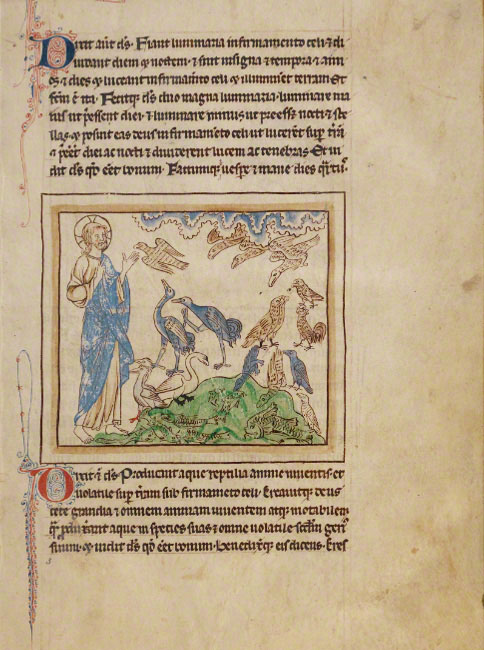 The Creation of the Birds and Fishes / Northumberland Bestiary