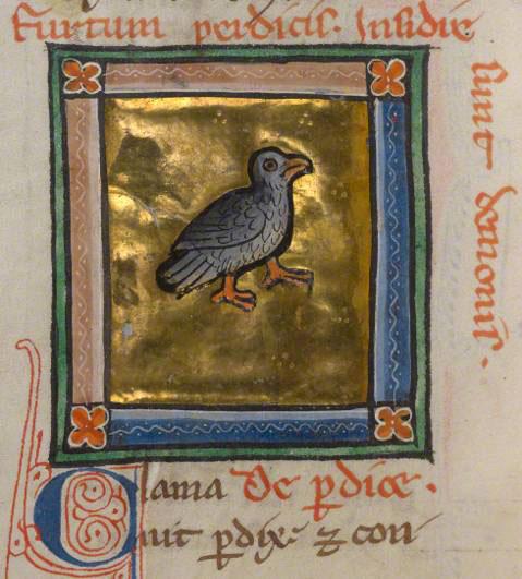 A partridge in a bestiary
