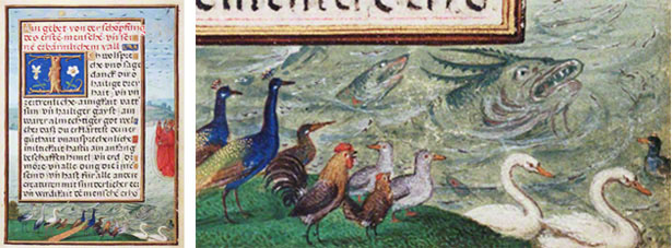 Border with the Creation of Birds and Fishes / Simon Bening