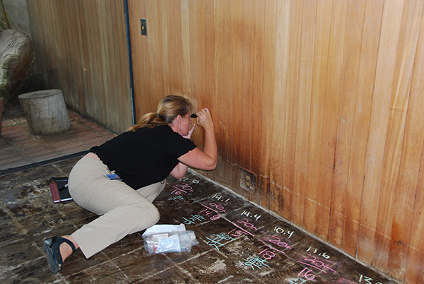 GCI scientist Joy Mazurek carrying out an investigation of the wood panels.