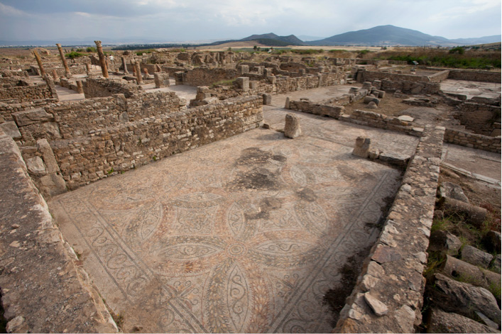 Large floor mosaic in a courtyard of the Maison de la Chasse, Bulla Regia, Tunisia