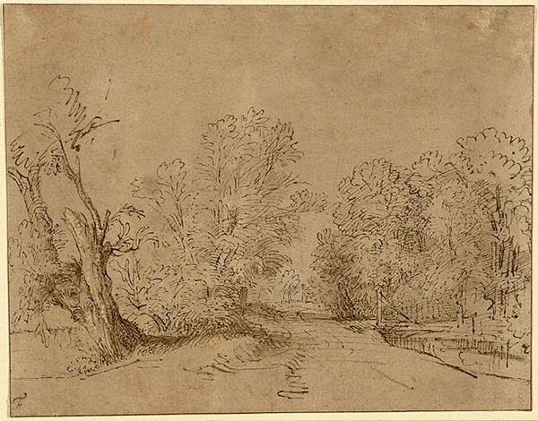A Wooded Road / Rembrandt Harmensz. van Rijn