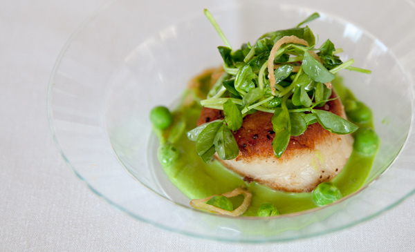 Pea tendrils with scallop / Getty Restaurant