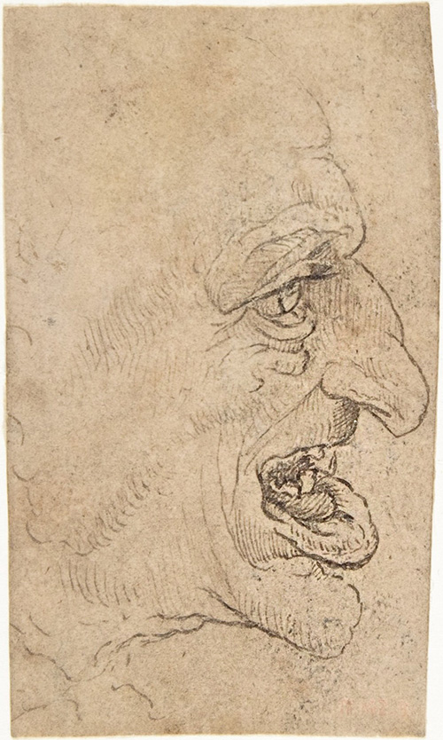 The Head of a Grotesque Man in Profile Facing Right / unknown artist after Leonardo da Vinci