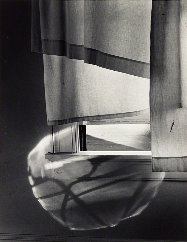 Windowsill Daydreaming, Rochester / Minor White