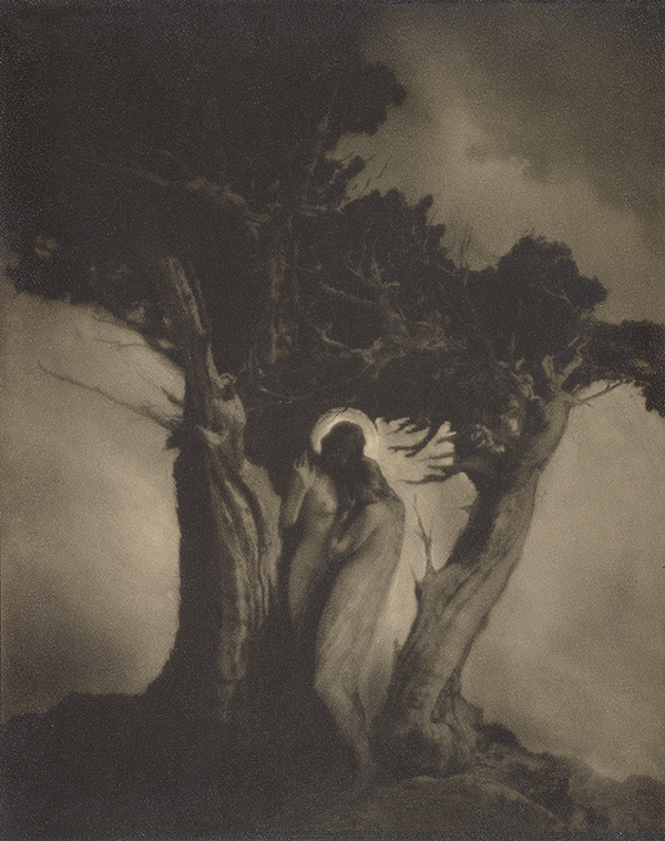 The Heart of the Storm / Anne Brigman