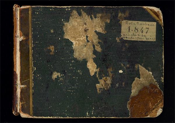 Rosa Bonheur sketchbook: cover