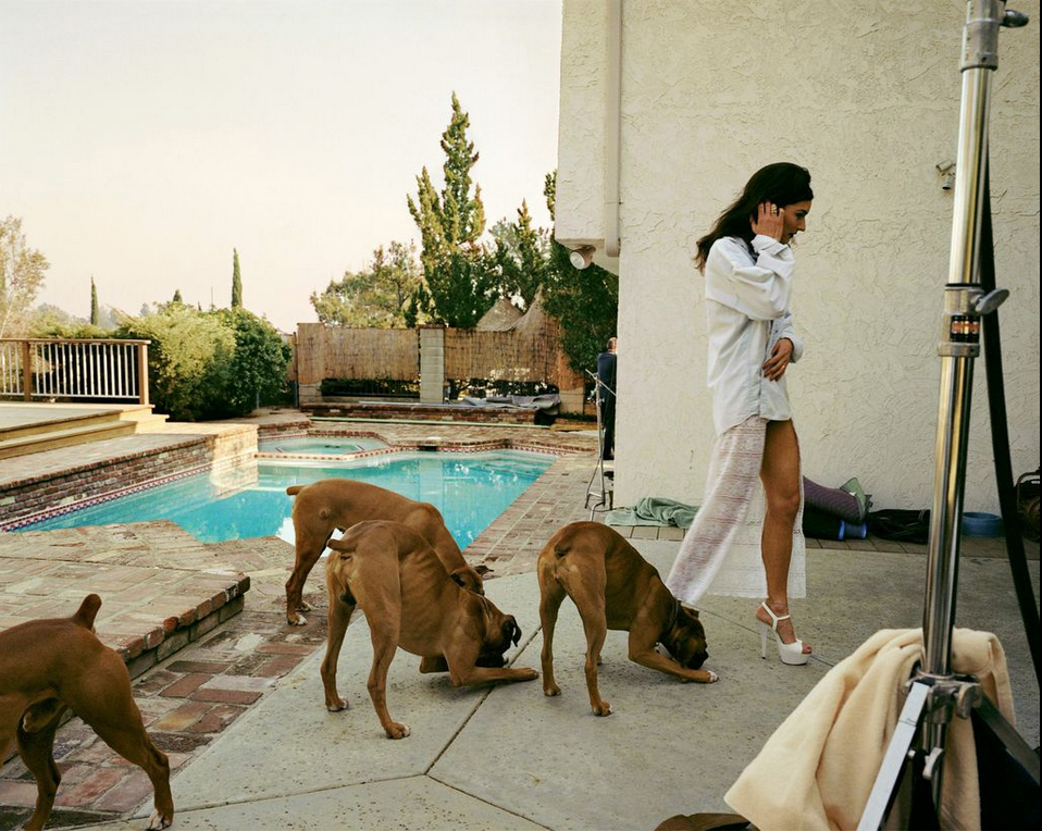 """Boxers, Mission Hills from the series """"The Valley"""", 1999, Larry Sultan. Chromogenic print. 40 x 50 inches. Photo courtesy of the Estate of Larry Sultan © Estate of Larry Sultan"""