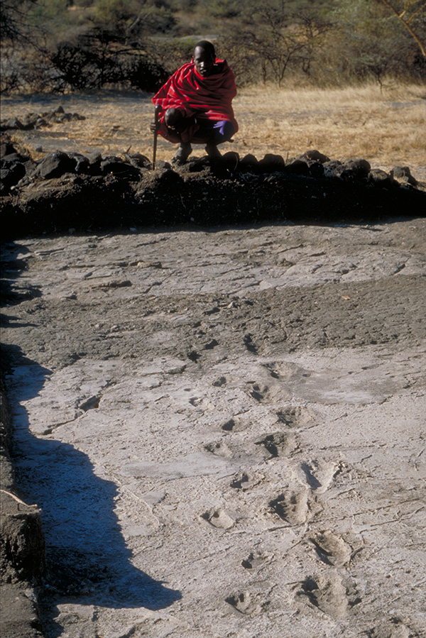 hominid footprints at Laetoli