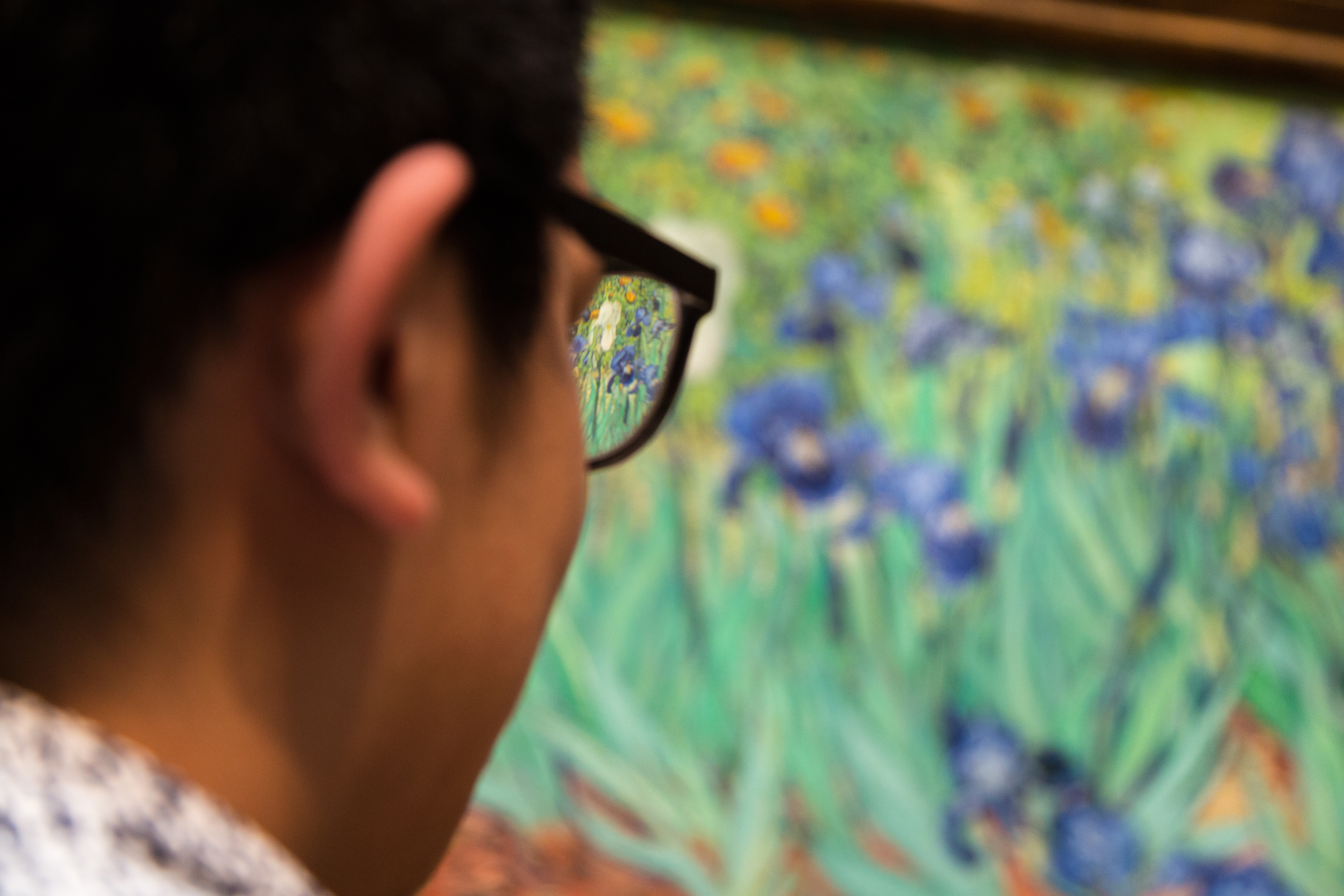 Five Ways of Seeing Van Gogh's Irises