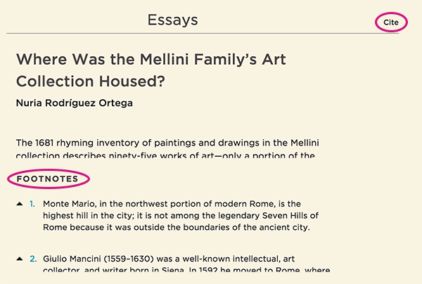 Features in the Mellini publication Essays section
