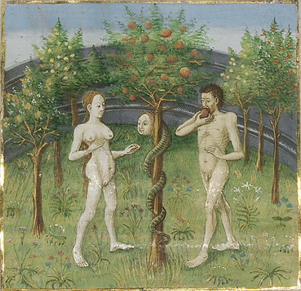 Adam and Eve Eating the Forbidden Fruit in City of God, about 1440–50, Master of the Oxford Hours, artist, and Saint Augustine, author. Tempera colors, gold and silver paint on parchment; 14 1/4 x 10 3/4 in. The J. Paul Getty Museum, Ms. Ludwig XI 10, fols. 31v–32