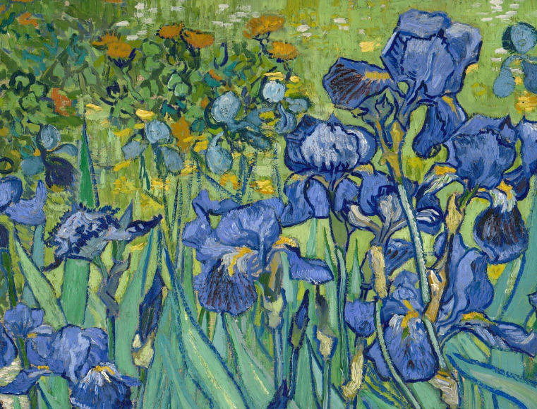 Detail of Irises / Van Gogh