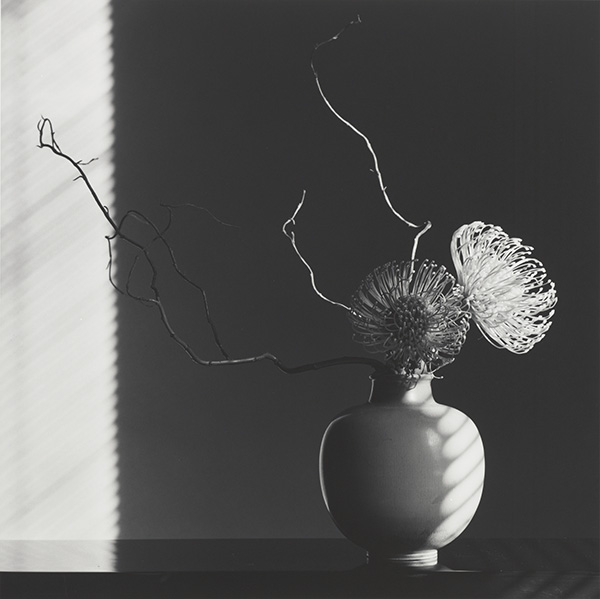 Flower Arrangement / Robert Mapplethorpe