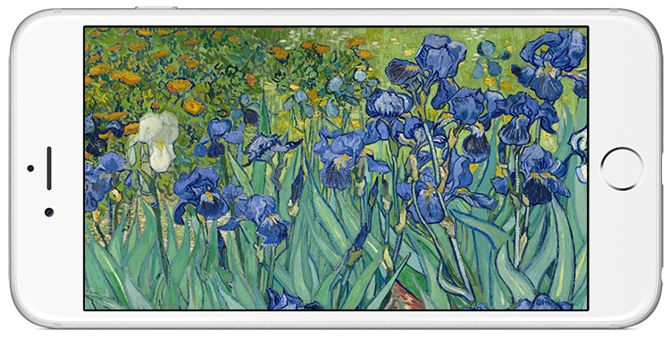 Vincent van Gogh's Irises as an iPhone background.