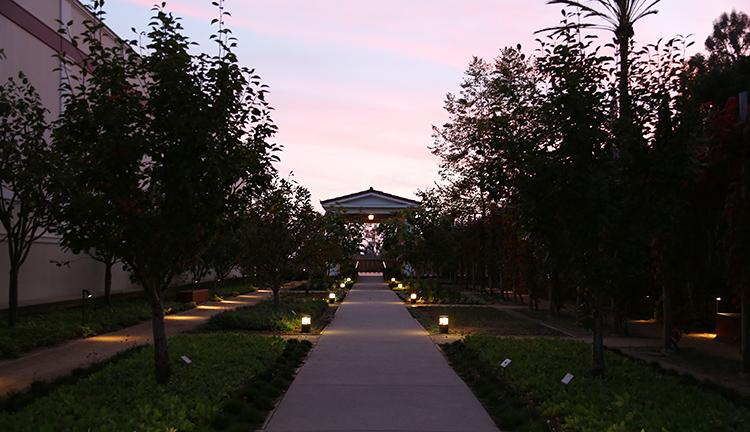 The Getty Villa Herb Garden at dusk