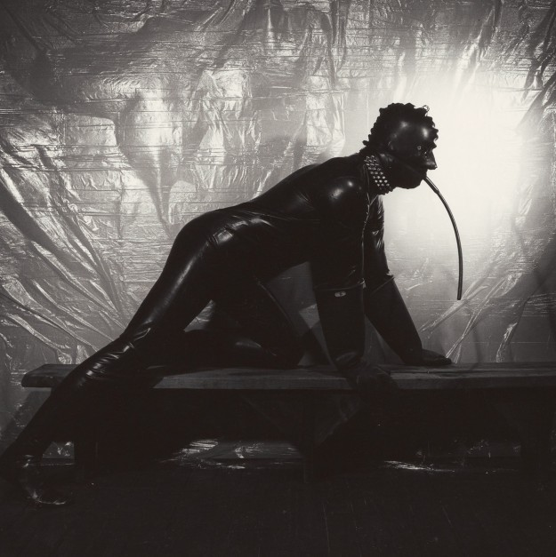 I Defended Mapplethorpe in the Trial that Drew the Line between Art and Obscenity
