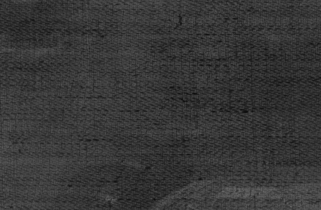 Detail of the X-ray shows the twill weave structure of the original canvas.