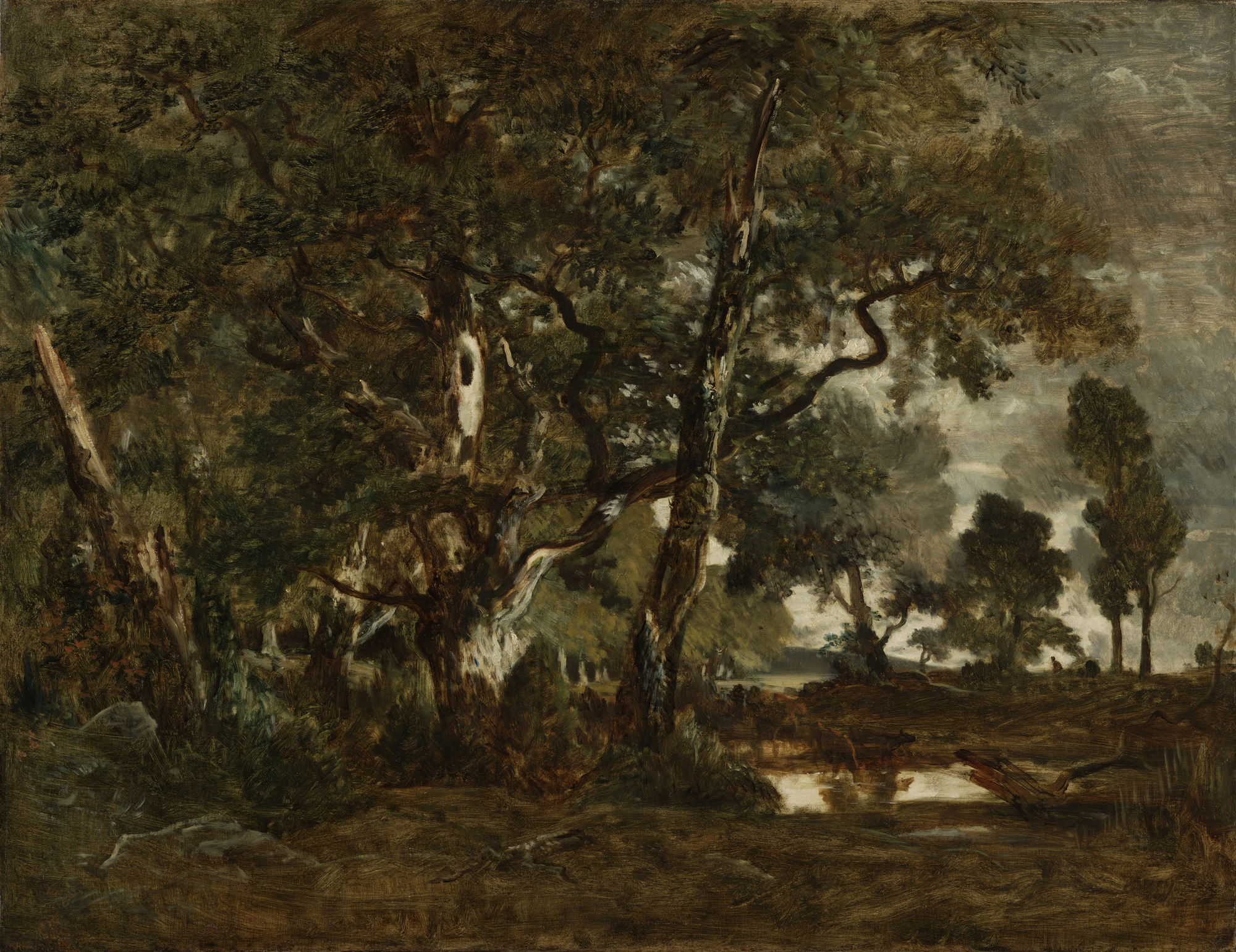 <em/>Forest of Fontainebleau, Cluster of Tall Trees Overlooking the Plain of Clair-Bois at the Edge of Bas-Bréau, about 1849–52, Théodore Rousseau. Oil on canvas