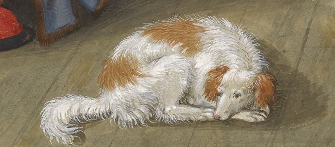 Detail of dog. The Author in his Study, about 1530–40, Simon Bening