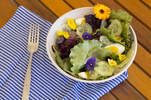 Getty Salad Garden: Marcia Reed