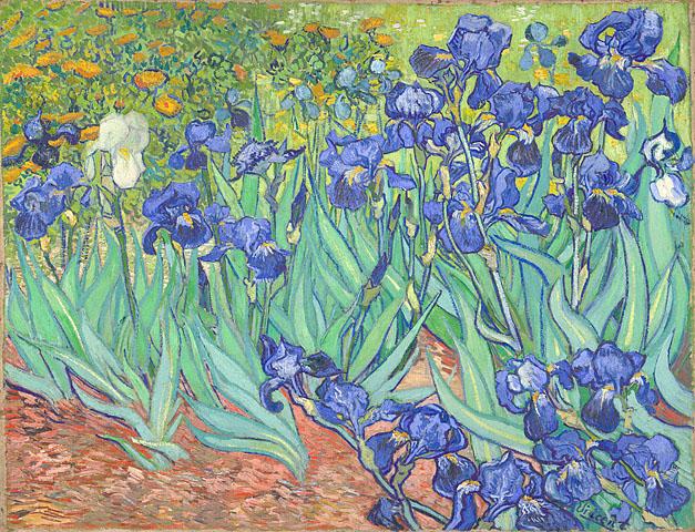 Irises, Vincent van Gogh, 1889