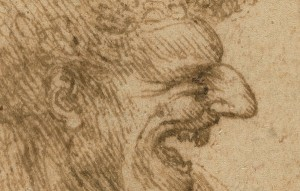 Detail of a Caricature of a Man with Bushy Hair / Leonardo da Vinci
