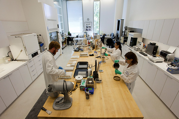 Laboratory at the Getty Conservation Institute
