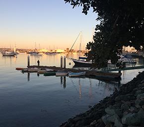 San Diego harbor / Steph Grimes