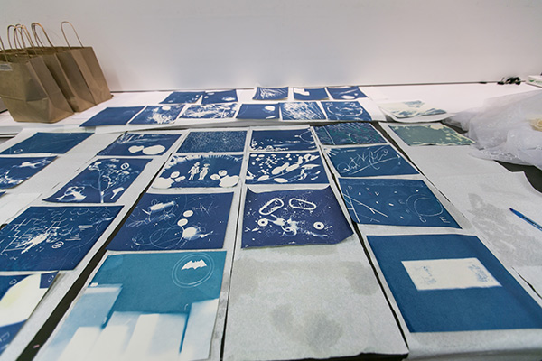 Cyanotypes created by student participants in Community Photoworks 2015