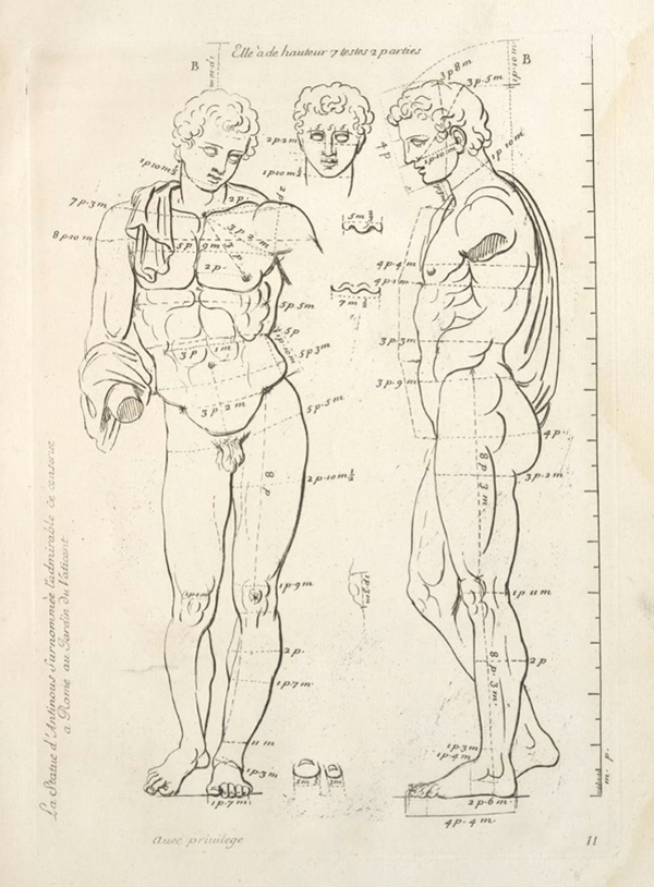 Belvedere Antinous in Gerard Audran, Les proportions du corps humain...