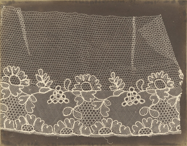 Lace / William Henry Fox Talbot