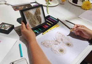 Sketching a moth at Family Art Lab: Still Lifes in Blossom