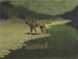 Moonlight, Wolf / Remington