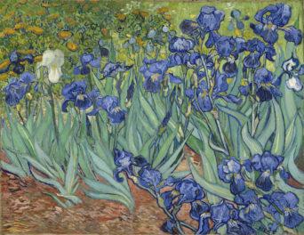 Five Ways of Seeing Van Gogh's <em>Irises</em>